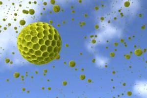 particle-pollen