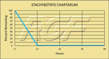 Stachybotrys chart