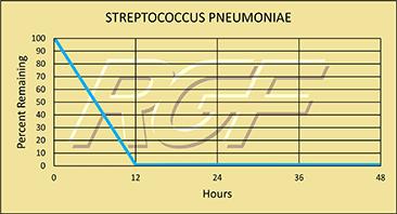 Streptococcus chart