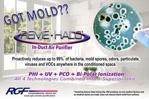 Got Mold? flyer