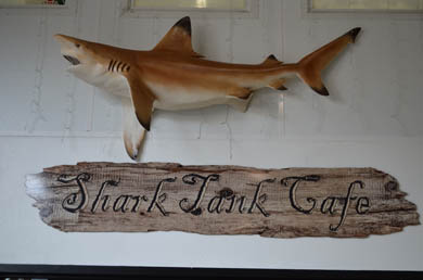 Shark Tank Cafe