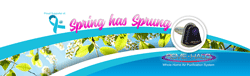 Spring Has Sprung flyer 2019