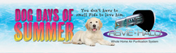 Dog days of summer banner thumb